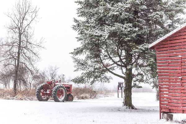 Snow Day at the Farm